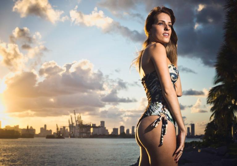 Miami-395 copy